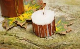 De herfststilleven op houten achtergrond Royalty-vrije Stock Foto