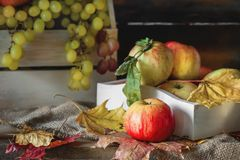 De herfststilleven van appelen en bladeren in een doos met groene druiven Stock Foto