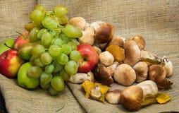 de herfststilleven van druiven, appelen en paddestoelen Royalty-vrije Stock Foto's