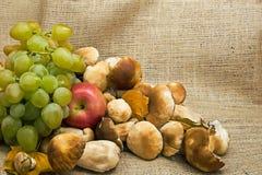 De herfststilleven van druiven, chblok en paddestoelen Stock Foto's
