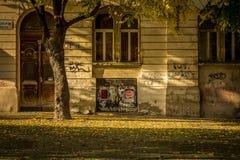 De herfststraat stock fotografie