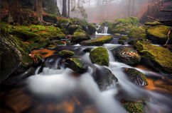 De herfststroom Stock Afbeeldingen