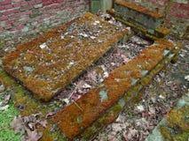 De herfsttijd in de oude verlaten en doorzochte Joodse begraafplaats Royalty-vrije Stock Afbeelding