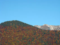 De herfsttrio - bomen, bergen, hemel Stock Fotografie