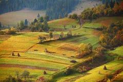 De herfsttuin in bergen Boomgaard op de dalingsheuvels Royalty-vrije Stock Foto