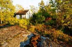 De herfsttuin in Stangnes, Noorwegen Stock Foto's