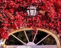 De herfstvenster Stock Afbeeldingen