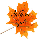 De herfstverkoop, hand het van letters voorzien, citaten Moderne motivatie calligraph Stock Afbeeldingen