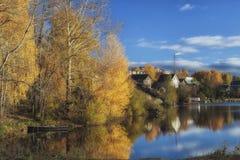 De herfstvijver Stock Foto's