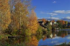 De herfstvijver Stock Fotografie