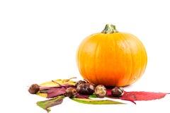 De herfstvruchten als symbool van Halloween vector illustratie