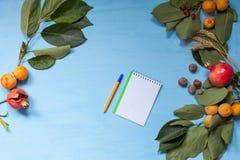 De herfstvruchten, noten, granaatappel op blauwe achtergrond stock foto's