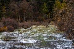 De herfstwaterval op een berghelling in het bos stock foto's