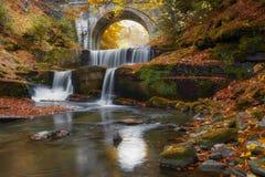 De herfstwatervallen dichtbij Sitovo, Plovdiv, Bulgarije Mooie cascades van water met gevallen gele bladeren stock foto's