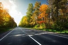 De herfstweg Stock Foto