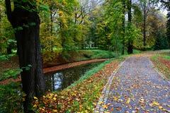 De herfstweg langs de kreek Stock Foto's
