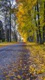 De herfstweg, middag Royalty-vrije Stock Afbeeldingen