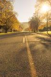 De herfstwegen Nieuw Zeeland Royalty-vrije Stock Afbeeldingen