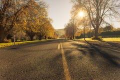 De herfstwegen Nieuw Zeeland Stock Foto's