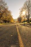 De herfstwegen Nieuw Zeeland Royalty-vrije Stock Foto