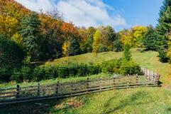 De herfstweiland en boomkwekerij Royalty-vrije Stock Afbeeldingen