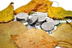 De herfstwisselkoers Royalty-vrije Stock Afbeelding