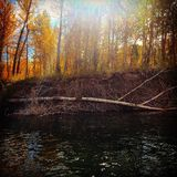 De herfstzonneschijn op de rivier Royalty-vrije Stock Foto's