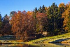 De herfstzonsondergang in park Royalty-vrije Stock Afbeeldingen