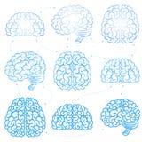 De hersenen Stock Foto's