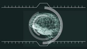 De hersenen die itslef draaien met analyseren informatie vector illustratie
