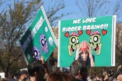 De hersenen van de zombie Stock Foto