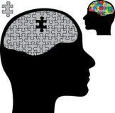 De hersenen van het raadsel Stock Afbeeldingen