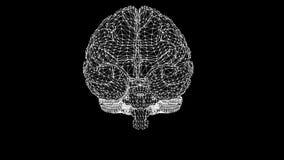 De hersenen van het veelhoekige netwerk gloeien Een computermodel van de hersenen Video met Alpha Channel vector illustratie