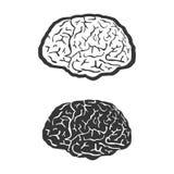 De hersenen, vector, mens, symbool, geneeskunde, denken, Royalty-vrije Stock Afbeelding