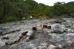 De hersenschim, brandende rotsen is opmerkelijke vlek ot de sleep van Lycian-manier dichtbij Cirali, Antaly stock afbeeldingen