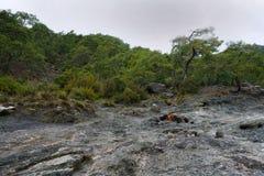 De hersenschim, brandende rotsen is opmerkelijke vlek ot de sleep van Lycian-manier dichtbij Cirali, Antaly royalty-vrije stock foto's