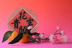 De het Chinese ornament en mandarijnen van het Nieuwjaar Royalty-vrije Stock Afbeeldingen