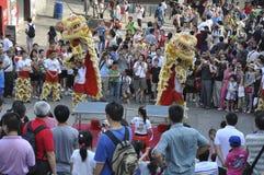 De het dansen leeuw stock afbeeldingen