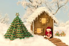 De het eetbare huis en baby van de Kerstmispeperkoek stock afbeelding