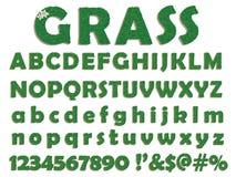 De brieven van het gras Stock Fotografie