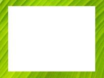 De het groene kader of achtergrond van het banaanblad Stock Afbeeldingen