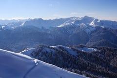 De het hoge die landschap en hellingen van de bergwinter met pijnboombos en sneeuw wordt behandeld Stock Afbeelding