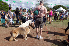 De het Huisdierengang 2014 van Honolulu, de mensen en de honden onderzoeken cabine bij Ala Moa royalty-vrije stock afbeeldingen