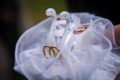 De het huwelijksliefde van het zwanenhoofdkussen belt witte decoratie Stock Fotografie
