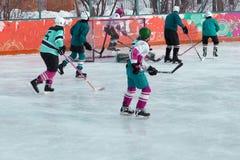 De het kampioenschapsgelijke van de ijshockeywereld tussen de teams stock afbeelding