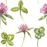 De het klaverblad en bloemen overhandigen de getrokken naadloze illustratie van de patroonwaterverf De gelukkige dag van heilige  Royalty-vrije Stock Afbeeldingen