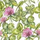 De het klaverblad en bloemen overhandigen de getrokken naadloze illustratie van de patroonwaterverf De gelukkige dag van heilige  Royalty-vrije Stock Fotografie