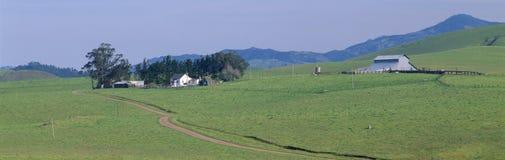 De het landbouwbedrijfhuis en Schuur in de Lente, leiden 1 dichtbij Cambria, Californië Stock Foto's