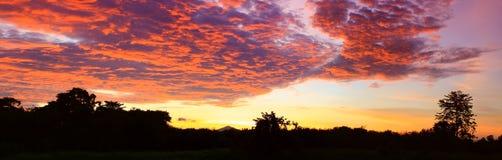 De het mooie kleurrijke landschap van de panoramazonsondergang en berg van de silhouetboom in de tijd van de hemelschemering Stock Foto's