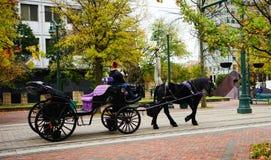 De het paardrit van de binnenstad van Memphis royalty-vrije stock afbeeldingen